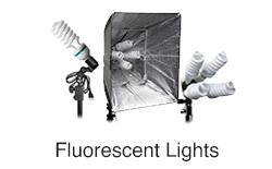 Fluorescent Lighting Kits Constant Lights Continuous Lighting